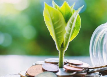 Financial Sustainability for NGOs